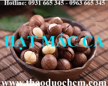 Mua bán hạt mắc ca tại huyện Thạch Thất rất tốt khi dùng làm mỹ phẩm