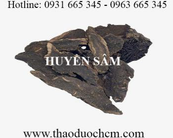 Mua bán huyền sâm tại Ninh Thuận sử dụng thanh nhiệt giải độc hiệu quả nhất