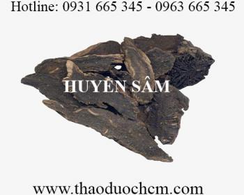 Mua bán huyền sâm tại Thái Bình có công dụng trị nấm ngoài da rất tốt