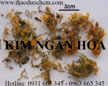 Mua bán kim ngân hoa tại huyện Thanh Trì giúp điều trị đau họng an toàn
