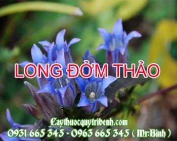 Mua bán long đởm thảo tại Vĩnh Long có tác dụng trị viêm tinh hoàn cấp tính