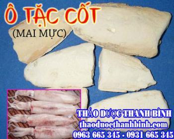 Mua bán ô tặc cốt tại Lâm Đồng dùng để điều trị vết thương viêm tai giữa