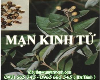 Mua bán mạn kinh tử tại huyện Thanh Oai giúp điều trị nhức đầu sốt