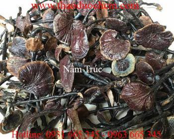 Mua bán nấm trúc tại Tiền Giang có công dụng điều trị xơ gan tốt nhất