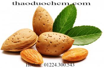 Mua bán quả hạnh nhân tại Yên Bái có công dụng điều hòa cholesterol