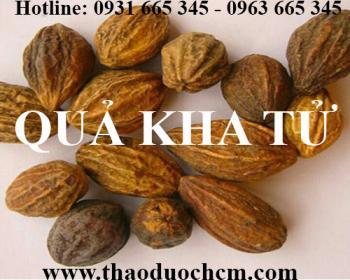 Mua bán quả kha tử tại huyện Ba Vì rất tốt trong việc điều trị ngộ độc thức ăn
