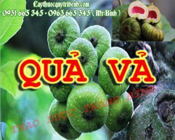 Mua bán quả vả tại Lạng Sơn có tác dụng giúp làm giảm nguy cơ ung thư vú