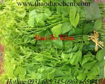 Mua bán rau bò khai ở quận Phú Nhuận có tác dụng giúp ăn uống ngon miệng