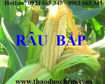 Mua râu ngô tại Hà Nội uy tín chất lượng tốt nhất