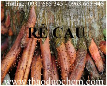 Mua bán rễ cau tại Quảng Ninh rất tốt trong việc điều trị kiết lị