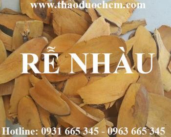 Mua bán rễ nhàu tại Quảng Ninh có công dụng nhuộm đỏ quần áo và vải lụa