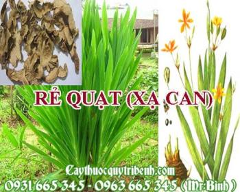Mua bán rẻ quạt (xạ can) tại Quảng Bình rất tốt trong việc điều trị ho hen