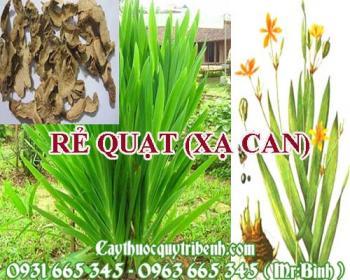 Mua bán rẻ quạt (xạ can) tại Tây Ninh rất tốt trong việc điều trị táo bón
