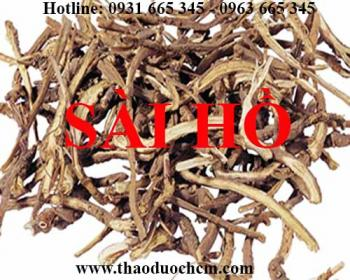 Mua bán sài hồ tại huyện Thường Tín có tác dụng trị viêm túi mật tốt nhất