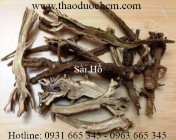 Mua bán sài hồ tại Tuyên Quang điều trị viêm loét dạ dày tốt nhất