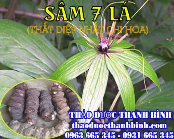 Mua bán sâm 7 lá (thất diệp nhất chi mai) tại Thái Nguyên hỗ trợ trị vết thương do rắn cắn