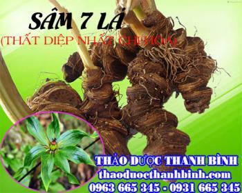 Mua bán sâm 7 lá (thất diệp nhất chi mai) tại Quảng Ninh giúp chữa vết thương do rắn cắn