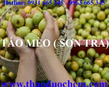 Mua bán quả táo mèo tại huyện Sóc Sơn giúp điều trị tiêu chảy hiệu quả nhất