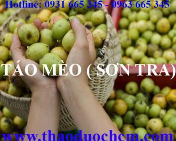 Mua bán quả táo mèo tại huyện Phúc Thọ có tác dụng kháng khuẩn an toàn