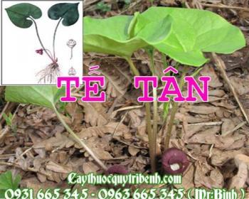 Mua bán tế tân tại huyện Thanh Oai rất tốt trong việc trị cảm lạnh sổ mũi