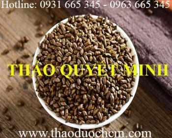 Mua bán hạt thảo quyết minh tại Tiền Giang hỗ trợ điều hòa huyết áp