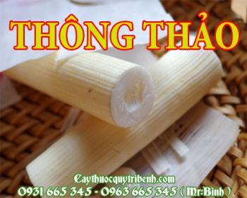 Mua bán thông thảo tại Thừa Thiên Huế có tác dụng trị bệnh phù thũng