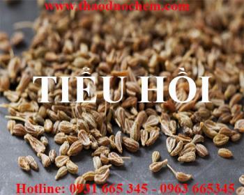Mua bán tiểu hồi tại Đà Nẵng rất tốt trong việc trị giun sán tiêu hóa tốt