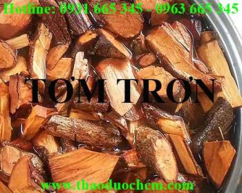 Mua bán tơm trơn tại TP HCM uy tín chất lượng tốt nhất