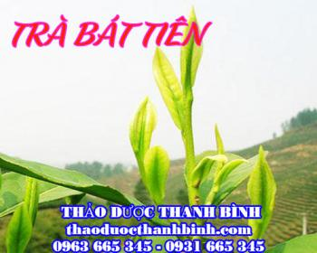 Mua bán trà Bát Tiên tại Lạng Sơn rất tốt trong việc giải độc gan