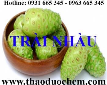 Mua trái nhàu khô tại Hà Nội uy tín chất lượng tốt nhất