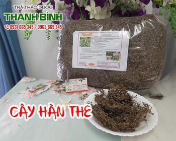 Mua bán cây hàn the tại TPHCM uy tín chất lượng tốt nhất