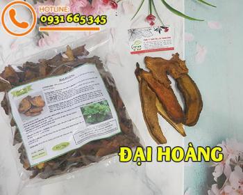 Mua bán đại hoàng ở huyện Bình Chánh giúp tăng cường chức năng hệ tiêu hóa