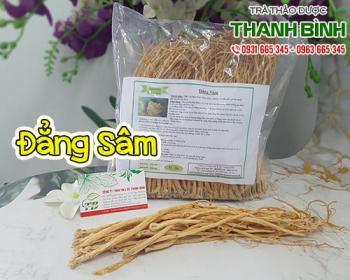Mua bán đẳng sâm ở quận Phú Nhuận giúp điều trị suy nhược cơ thể, bổ dưỡng