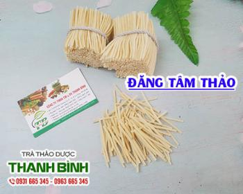 Mua bán đăng tâm thảo ở quận Phú Nhuận giúp lợi tiểu và giảm tiểu buốt