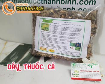 Mua bán dây thuốc cá ở huyện Củ Chi có tác dụng thanh nhiệt và thải độc