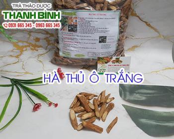 Mua bán hà thủ ô trắng ở quận Tân Phú giúp điều trị cảm nắng và hạ sốt