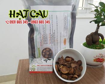 Mua bán hạt cau tại huyện Thường Tín hỗ trợ trị chứng ăn khó tiêu, táo bón