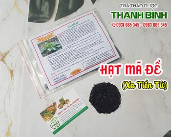 Mua bán hạt mã đề ở quận Phú Nhuận giúp mát gan và bộ gan thận rất tốt