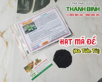 Mua bán hạt mã đề ở huyện Hóc Môn giúp điều hòa và thanh nhiệt cơ thể