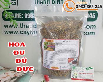 Mua bán hoa đu đủ đực ở quận Tân Bình giúp điều hòa đường huyết, trị ho
