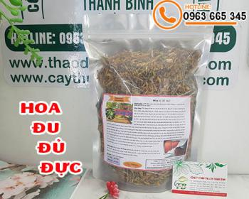 Mua bán hoa đu đủ đực ở huyện Bình Chánh giúp điều trị ho, viêm họng