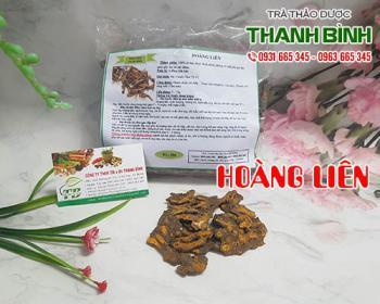 Mua bán hoàng liên ở quận Tân Phú giúp điều trị nóng trong gây nhiệt miệng