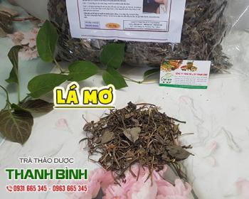 Mua bán lá mơ ở huyện Bình Chánh giúp điều trị ho gà và cảm lạnh rất tốt