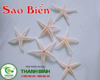 Mua bán sao biển ở quận Bình Tân rất tốt trong việc điều hòa huyết áp