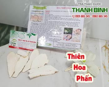 Mua bán thiên hoa phấn ở huyện Hóc Môn giúp trị sốt rét, sưng đau khớp