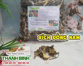 Mua bán xích đồng nam ở quận Bình Tân có tác dụng điều hòa kinh nguyệt