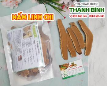 Mua bán nấm linh chi tại TPHCM uy tín chất lượng tốt nhất
