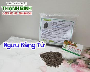 Mua bán ngưu bàng tử ở quận Gò Vấp giúp kháng viêm điều trị sưng vú
