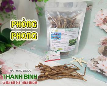 Mua bán phòng phong ở quận Tân Bình giúp điều trị chóng mặt, cảm cúm