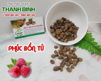 Mua bán phúc bồn tử ở quận Tân Phú hỗ trợ ngừa lão hóa da giúp đẹp da